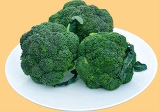 西兰花是转基因蔬菜?西兰花转基因食品吗