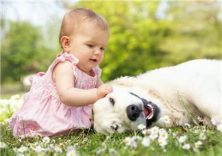 孩子不愿意分享是自私吗?怎么帮孩子树立分享意识?