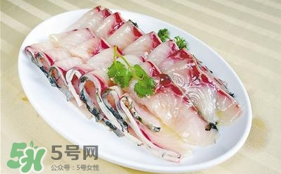 生鱼是什么鱼?生鱼片是什么鱼