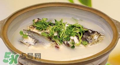 生鱼怎么做好吃?生鱼汤的做法和功效
