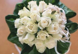 母亲节可以送白玫瑰吗?白玫瑰适合送什么人?