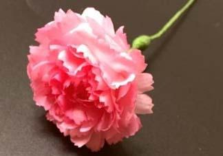 母亲节可以送纸做的康乃馨吗?康乃馨怎么折?