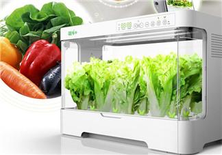 欢乐颂2安迪种菜的设备是什么?海尔菜多多智能种菜机使用方法