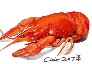 梁荷龙虾怎么样? 梁荷龙虾好吃吗?