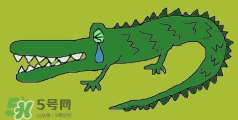 鳄鱼的眼泪是什么意思 鳄鱼的眼泪是什么意思?鳄鱼为什么会留眼泪