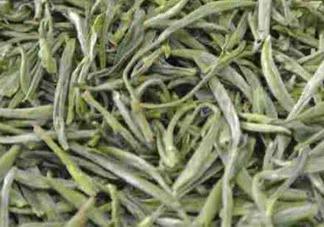 安吉白片是绿茶吗?安吉白片和安吉白茶有什么区别
