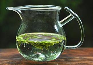 安吉白茶属于什么茶?安吉白茶是绿茶吗
