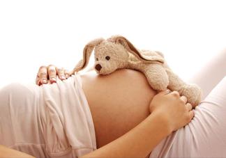 孕妇能吃麻婆豆腐吗?怀孕初期可以吃麻婆豆腐吗