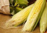 玉米须水什么人不能喝?玉米须煮水小孩能喝吗?