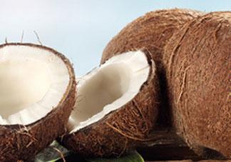 椰皇的营养价值_椰皇的功效与作用及食用禁忌