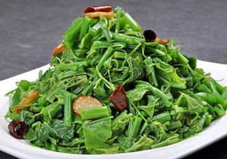 龙须菜是什么菜?龙须菜怎么吃?