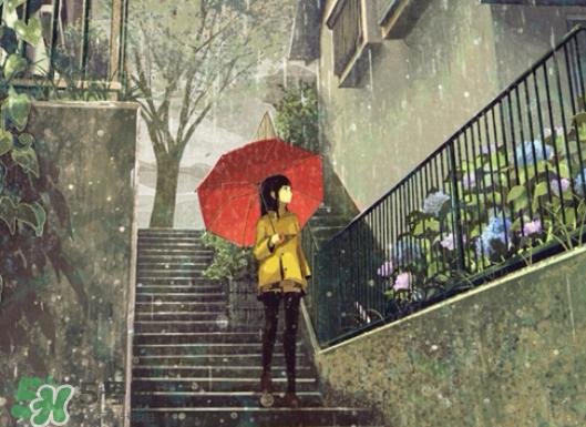 5397,倒转黄梅十八天(原创) - 春风化雨 - 诗人-春风化雨的博客