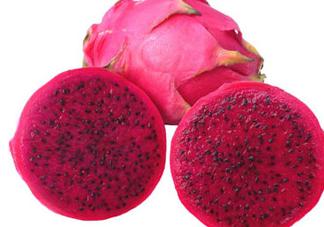 红心火龙果不能和什么一起吃?吃红心火龙果的禁忌