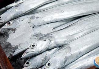 带鱼是深海鱼吗?带鱼是海鲜吗