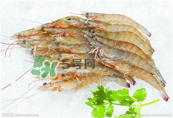 减肥适合吃皮皮虾吗图片