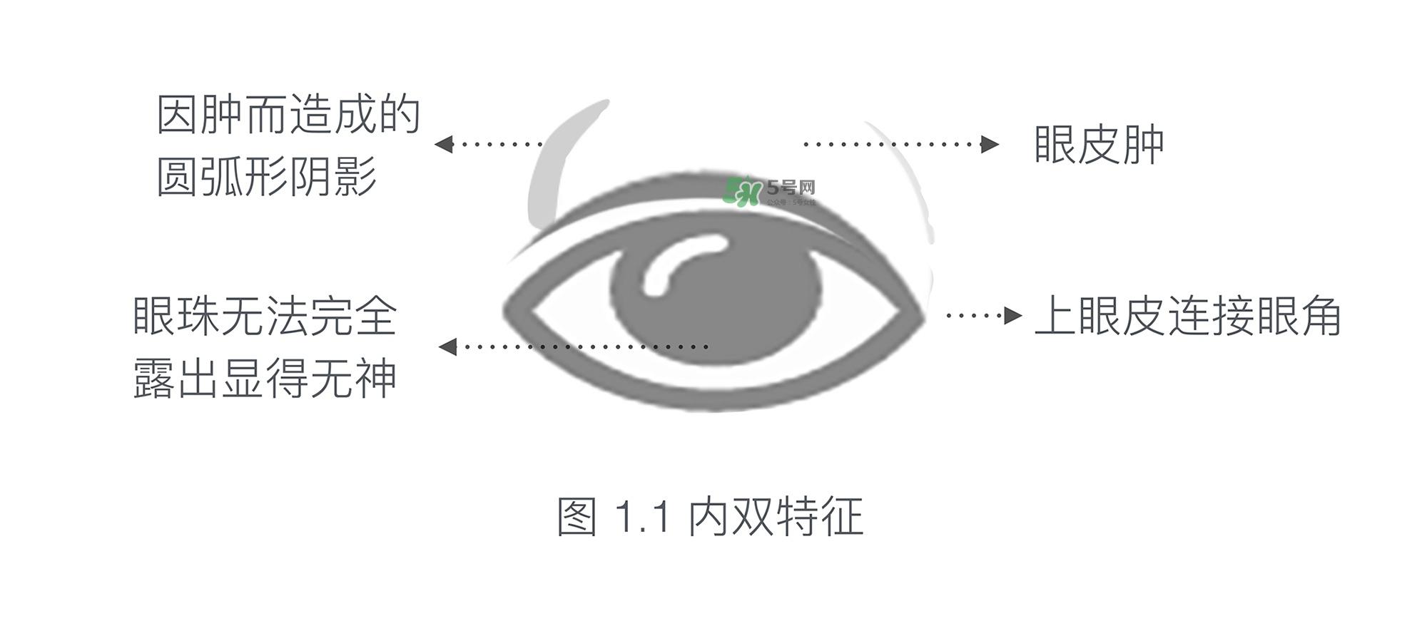 内双眼皮怎么画眼妆图片