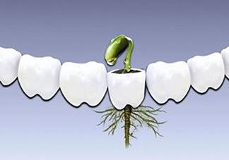 种植牙多少钱一颗?为什么种植牙很贵
