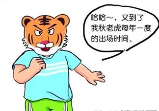 秋老虎有多热?秋老虎一般是怎么算的?