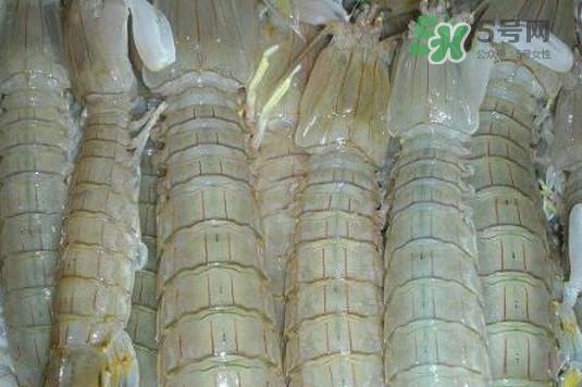 虾蛄怎么读?虾蛄多少钱一斤
