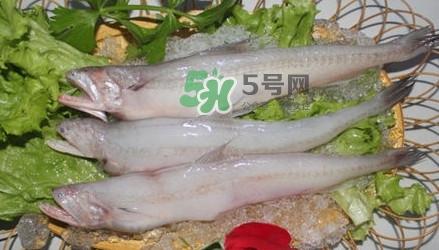 龙头鱼孕妇可以吃吗?孕妇能吃龙头鱼吗