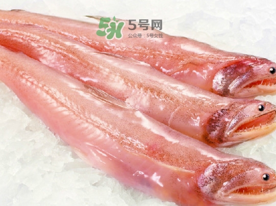 海鲜水潺孕妇可以吃吗?水潺鱼的营养价值