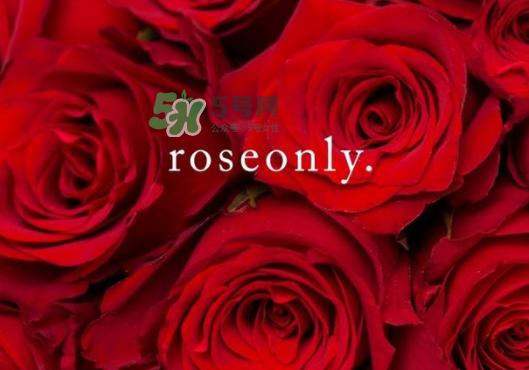 2017七夕礼盒roseonly多少钱?roseonly巨型玫瑰礼盒多少钱?
