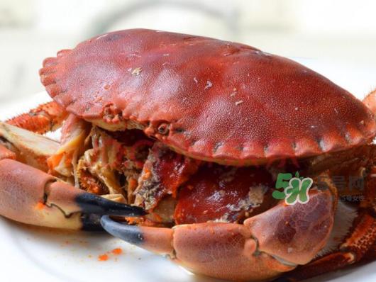 面包蟹一只多少斤?面包蟹一只多少钱?