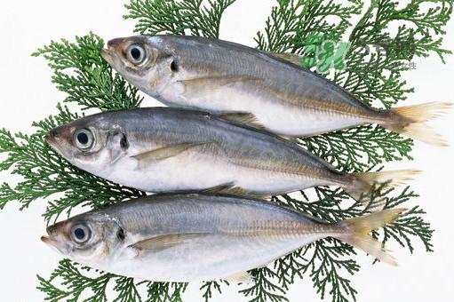 龙利鱼是鳕鱼吗?龙利鱼和鳕鱼哪个好吃