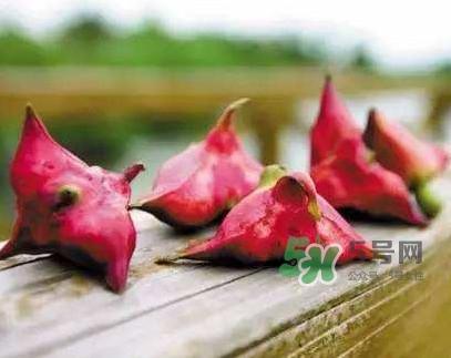 红菱怎么吃?吃红菱有什么好处?