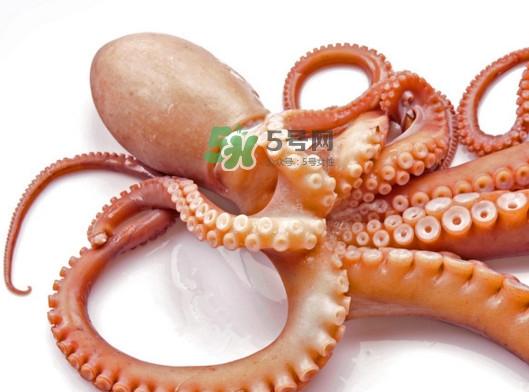 章鱼有几个心脏?章鱼有几条腿
