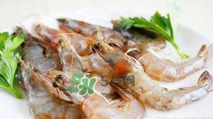 白虾有寄生虫吗?如何选购新鲜的虾