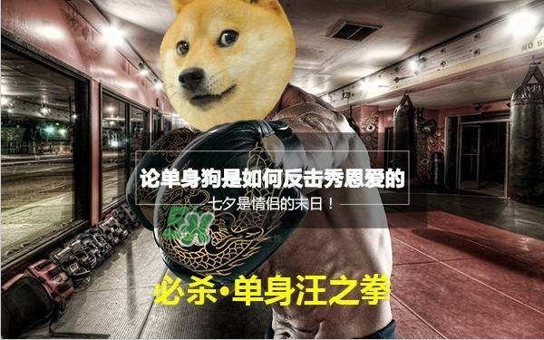 2017七夕单身狗说说 _七夕单身狗表情包_单身狗的七夕生存法则