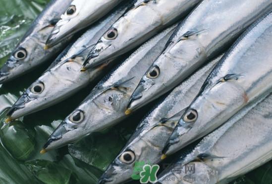 秋刀鱼多少钱一斤2017?秋刀鱼什么季节吃最好
