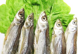 刁子鱼是秋刀鱼吗?刁子鱼是海鱼吗?