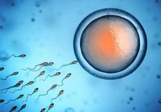精子在女性体内可以存活多久?男性的精子会枯竭吗?