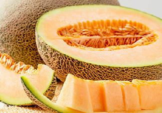西州蜜瓜的热量 吃西州蜜瓜会长胖吗