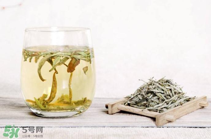 白毫银针是绿茶吗图片