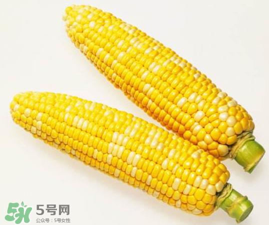 九月份能种玉米吗?玉米九月份还可以种吗?