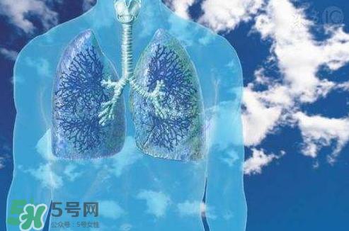 秋季如何护肺?秋季护肺小妙招