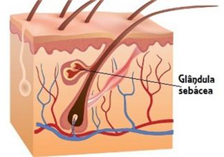 皮肤控油方法与技巧 控油三部曲