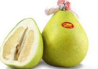 孕妇可以吃文旦吗 文旦柚孕妇可以吃