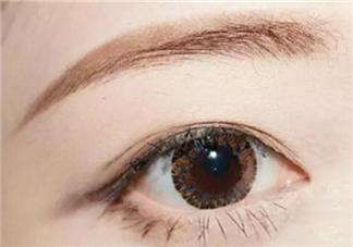 新手怎么画眉毛图解 新手画眉毛的步骤图片