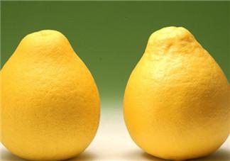 柚子不能和什么一起吃?文旦和柚子的区别