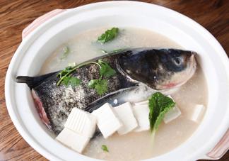 手术后可以吃胖头鱼吗?胖头鱼不能和什么一起吃