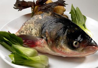 胖头鱼吃什么?胖头鱼怎么杀