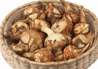 慈菇怎么做好吃?慈菇的功效与作用
