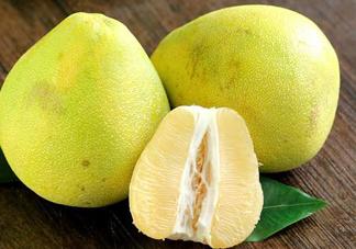 柚子为什么叫文旦?为什么吃柚子嘴麻