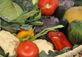 长期吃素对身体好吗_吃素就是只吃蔬菜吗