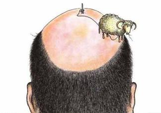 秃顶了还能长出头发吗?秃顶和性欲太强是不是有关