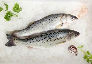 鲈鱼不能和什么一起吃?鲈鱼可以和鸡蛋一起吃吗